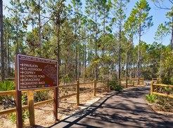 Arbor Day Conservation Park, Panama City Beach, FL