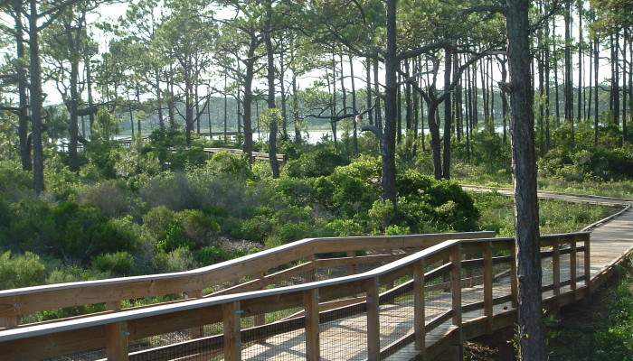 St. Andrews State Park, Panama City Beach, FL